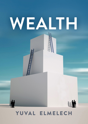 Cover for Wealth (Economy and Society)