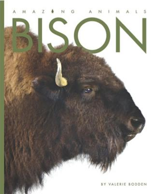 Amazing Animals: Bison Cover Image
