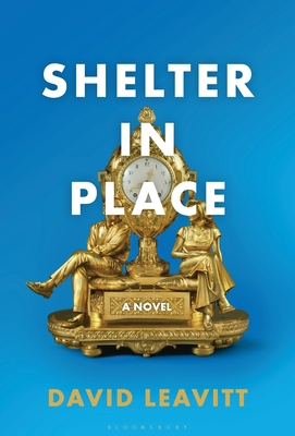 SHELTER IN PLACE - By David Leavitt