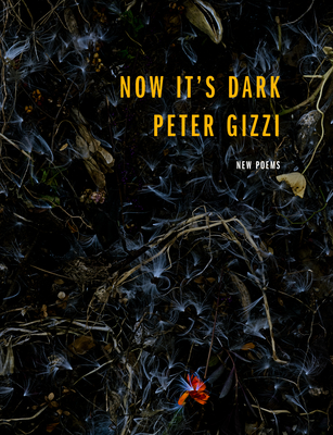 Now It's Dark (Wesleyan Poetry) Cover Image