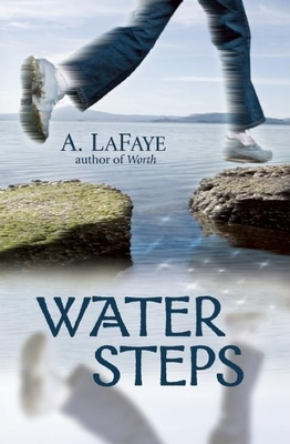 Water Steps Cover