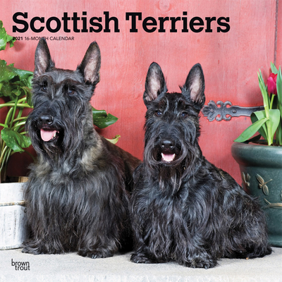 Scottish Terriers 2021 Square Cover Image