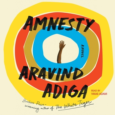 Amnesty Cover Image