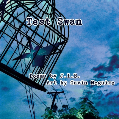 Test Swan Cover Image
