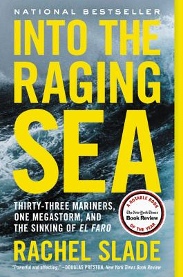 Into the Raging Sea cover image