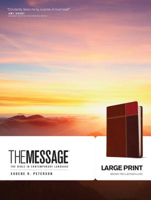 Message-MS-Large Print Numbered: The Bible in Contemporary Language Cover Image
