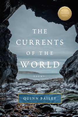 Cover for The Currents of the World