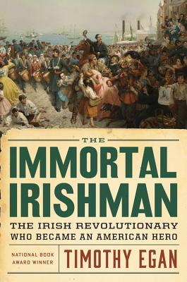The Immortal Irishman: The Irish Revolutionary Who Became an American Hero Cover Image