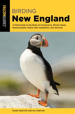 Birding New England: A Field Guide to the Birds of Connecticut, Rhode Island, Massachusetts, Maine, New Hampshire, and Vermont Cover Image