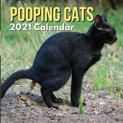 Pooping Cats Calendar 2021: Funny Animal Gag Joke Presents for Men Kids Women Birthday Christmas Stocking Stuffers Fillers Gifts Cover Image
