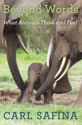 Beyond Words: What Animals Think and Feel Cover Image