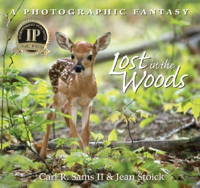 Lost in the Woods Cover Image