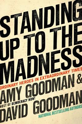 Standing Up to the Madness Cover