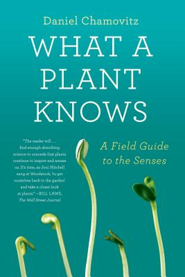 What a Plant Knows: A Field Guide to the Senses Cover Image