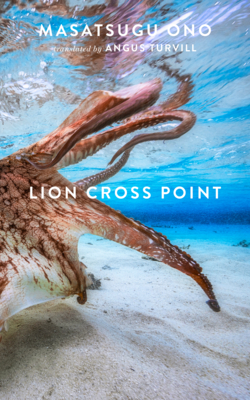 Lion Cross Point Cover Image