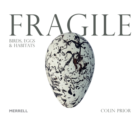 Fragile: Birds, Eggs and Habitats Cover Image