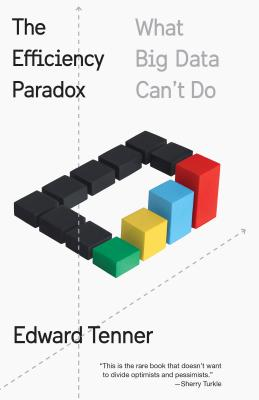 The Efficiency Paradox: What Big Data Can't Do Cover Image