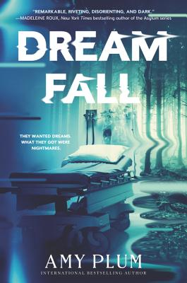 Cover for Dreamfall