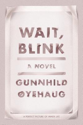 Wait, Blink: A Perfect Picture of Inner Life cover image