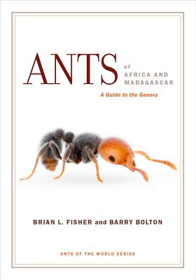 Cover for Ants of Africa and Madagascar