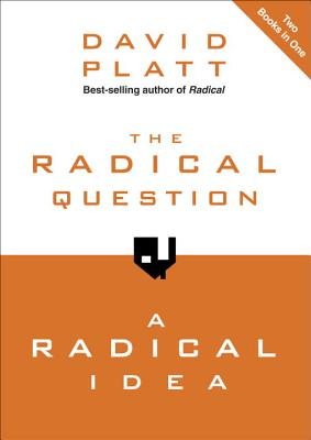 The Radical Question and a Radical Idea Cover Image