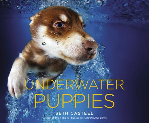 Underwater Puppies Cover