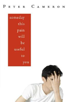 Someday This Pain Will Be Useful to You Cover