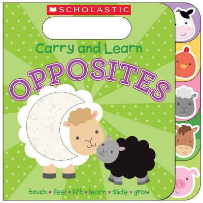 Carry and Learn Opposites Cover Image