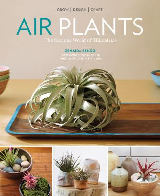 Air Plants: The Curious World of Tillandsias Cover Image