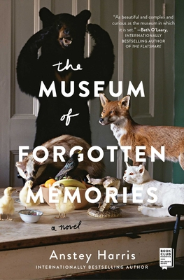 The Museum of Forgotten Memories: A Novel Cover Image