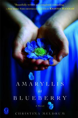 Amaryllis in Blueberry Cover