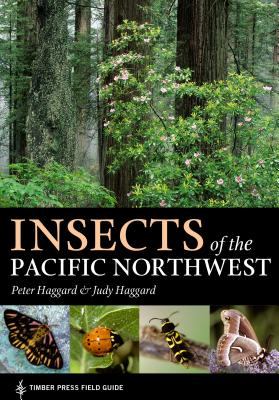 Insects of the Pacific Northwest Cover