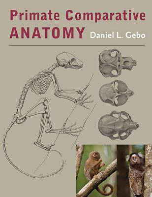Primate Comparative Anatomy Cover Image