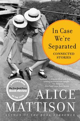 In Case We're Separated: Connected Stories Cover Image