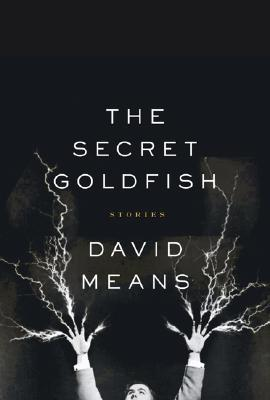 The Secret Goldfish Cover