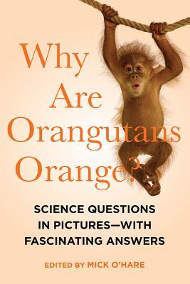 Cover for Why Are Orangutans Orange?