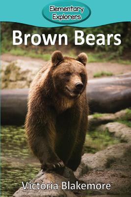 Brown Bears (Elementary Explorers #55) Cover Image