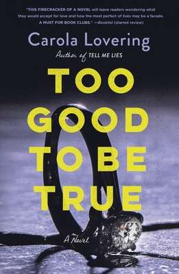Too Good to Be True: A Novel Cover Image