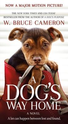 Dog's Way Home MTI cover image