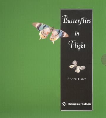 Cover for Butterflies in Flight