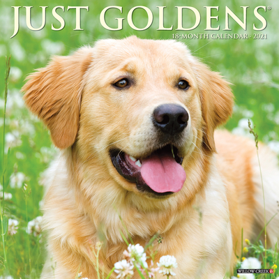 Just Goldens 2021 Wall Calendar (Dog Breed Calendar) Cover Image