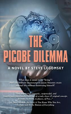 The Picobe Dilemma Cover Image