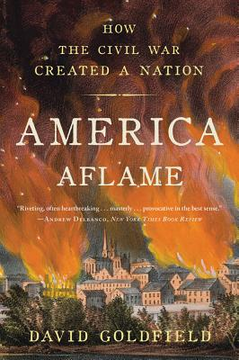 America Aflame: How the Civil War Created a Nation Cover Image
