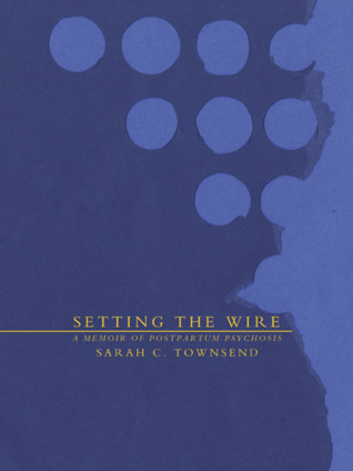 cover art for SETTING THE WIRE, a blue cover with water spots, lettered in yellow