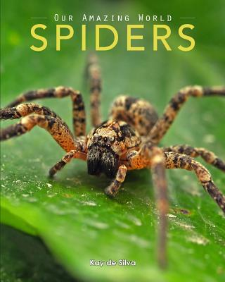 Spiders: Amazing Pictures & Fun Facts on Animals in Nature Cover Image