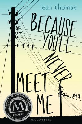 Because You'll Never Meet Me Cover Image