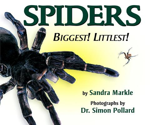 Spiders Biggest! Littlest! Cover