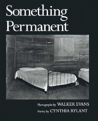 Something Permanent Cover Image