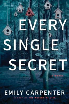 Every Single Secret Cover Image