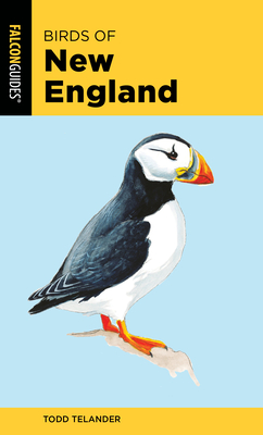 Birds of New England (Falcon Pocket Guides) Cover Image